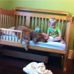 Деревянная кровать для мальчика от 3 лет фото