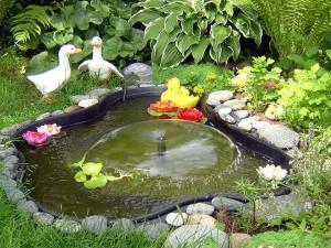 декоративные водоемы